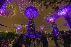SINGAPORE - APRIL 25 2019 : Singapore Night Skyline at Gardens b. Y the Bay. SuperTree Grove under Blue Night Sky in Singapore. Cityscape and city skyline in stock image