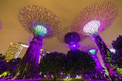 Singapore Night Skyline at Gardens b. SINGAPORE - APRIL 25 2019 : Singapore Night Skyline at Gardens by the Bay. SuperTree Grove under Blue Night Sky in stock images