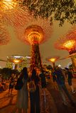 Singapore Night Skyline at Gardens by the Bay. SuperTree Grove under Blue Night Sky in Singapore. SINGAPORE - APRIL 25 2019 : Singapore Night Skyline at Gardens royalty free stock photos
