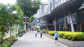 SINGAPORE - APRIL 3rd 2015: Flyg- sikt av trottoaren av fruktträdgårdvägen i Singapore Fruktträdgårdvägen är en av bästa shoppa Arkivfoto