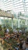SINGAPORE - APRIL 3rd, 2015: Inre sikt av det Marina Bay Sands hotellet, lobby av ett av de mest lyxiga hotellen i Royaltyfri Bild