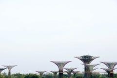 Singapore arbeta i trädgården vid fjärden turnerar Arkivbilder