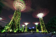 Unidentified tourist visited light of gardens by the bay at nigh Stock Image