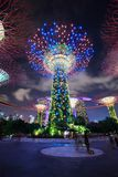 Unidentified tourist visited light of gardens by the bay at nigh Stock Photos