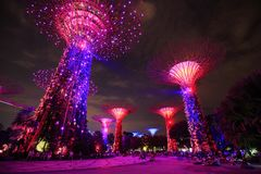 Tourist visited light show of gardens by the bay at night, Singa Royalty Free Stock Photos