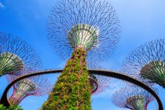 Unidentified tourist visited skyway of gardens by the bay at Sin Royalty Free Stock Image