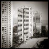Singapore bilder - byggnadsb&w Royaltyfri Bild