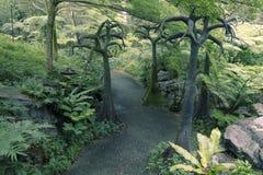 Singapore Botanical Garden Royalty Free Stock Photos