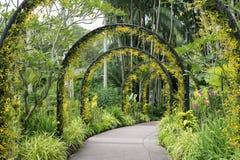 Singapore Botanical Garden Stock Images
