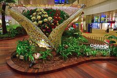 Garden in Singapore Changi Airport with green plants and beautiful flower.