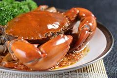 Singapore chili mud crab Stock Photos