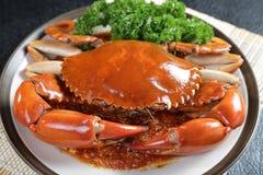 Singapore chili mud crab Royalty Free Stock Image