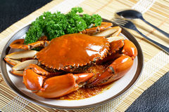 Singapore chili mud crab Stock Photo
