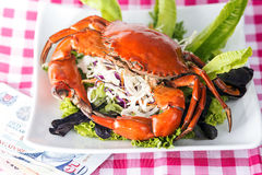 Singapore chili mud crab in in restaurant.  Stock Photography