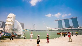 SINGAPORE - CIRCA FEB 2014: 4k Timelapse of Singapore Merlion and Marina bay sands hotel. The Merlion is a mythical creature, mascot and national stock video