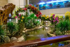 SINGAPORE - CIRCA MARCH, 23, 2018: Indoor view of people walking in a small garden with plants inside of Singapore. Changi Airport. Singapore Changi Airport is Royalty Free Stock Photo