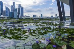 Singapore City during the day stock image