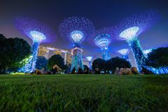 Singapore City - July 29, 2018 : Lights show at Supertree Grove. Garden by the bay in Marina Bay area at night, Singapore City Stock Image