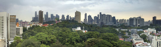 Singapore City Skyline with Green Landscape. Singapore City Skyline with Lush Green Landscape Panorama Stock Images