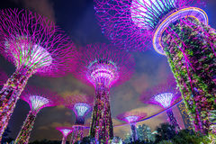 Singapore cityscape at night in Singapore. Stock Photo