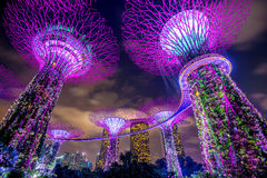 Singapore cityscape at night in Singapore. Stock Photos