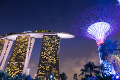 Singapore cityscape at night Supertrees Grove and Marina Bay San Stock Images