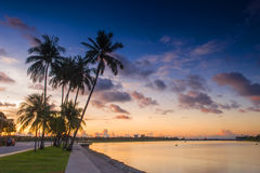 Singapore Dawn Royalty Free Stock Photography