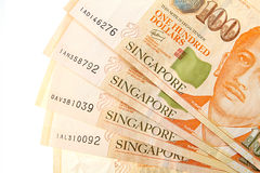Singapore Dollars Stock Photography