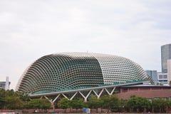 Singapore durian Arkivbilder