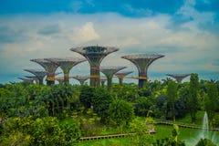 SINGAPORE, SINGAPORE - FEBRUARI 01, 2018: Mooie openluchtmening van de botanische tuin, Tuinen door de Baai binnen Royalty-vrije Stock Foto's