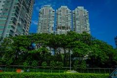 SINGAPORE SINGAPORE - FEBRUARI 01, 2018: Utomhus- sikt av lägenhetbyggnader i Singapore bakom av gruppen av träd Royaltyfri Foto