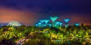 SINGAPORE, SINGAPORE - FEBRUARY 01, 2018: Beautiful futuristic view of amazing illumination at Garden by the Bay in Stock Photo