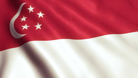 Singapore Flag Animation Video - 4K