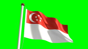 Singapore flag stock footage