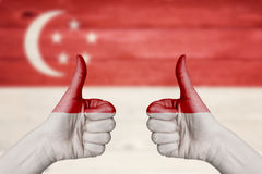 Singapore flag painted on female hands thumbs up Stock Images