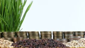 Singapore flag waving with stack of money coins and piles of wheat. And rice seeds stock footage