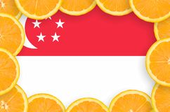 Singapore flagga i ny citrusfruktskivaram royaltyfria foton