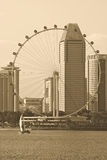 The Singapore flyer Royalty Free Stock Image