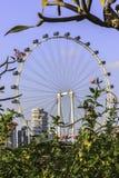 Singapore Ferris wheel - Flyer  Stock Photos