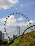 Singapore Flyer. Singapore - August 2016 - A view of the Singapore Flyer from the Gardens by the Bay stock photos