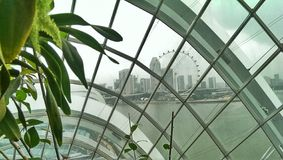 Singapore Flyer Ferris wheel  Royalty Free Stock Photos
