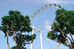 The Singapore flyer ferris wheel view Stock Photos