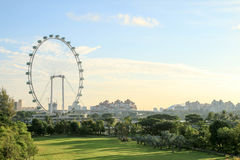 Singapore Flyer at morning - the Largest Ferris Wheel in the World. Singapore - JULY 10, 2017 : Singapore Flyer at morning - the Largest Ferris Wheel in the Royalty Free Stock Photography