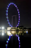 Singapore Flyer at Night Royalty Free Stock Images