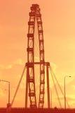 Singapore flyer at sunset stock image