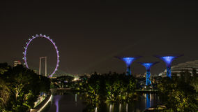 Singapore Flyer and Super Tree Royalty Free Stock Photos