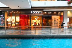Singapore: Fossil royaltyfria bilder