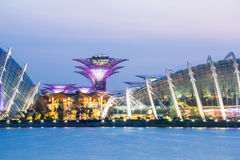 Singapore Garden by the bay Stock Image