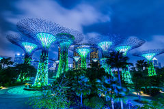 Singapore Garden by the Bay night view Stock Photography