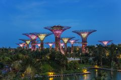 Gardens by the bay - Singapore Royalty Free Stock Photos